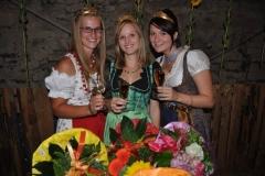 Burgweinfest 2013